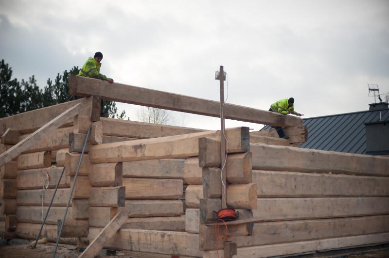 budowa szkieletowa domu z drewna